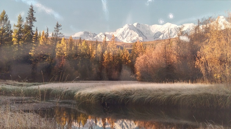 Алтай, озеро-старица