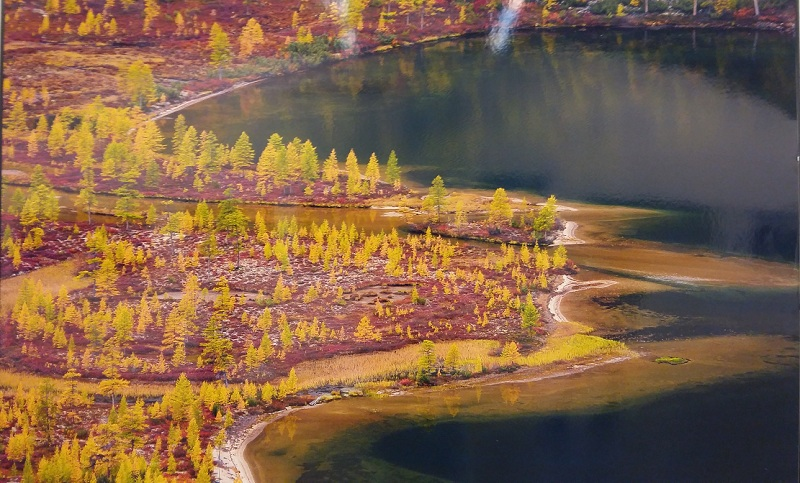 Устье ручья на Колыме