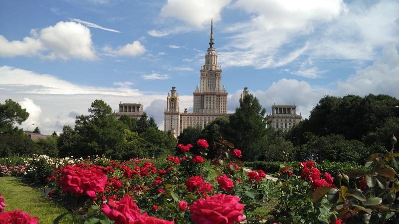 botanicheskij-sad-mgu-na-vorobevyh-gorah-rozy
